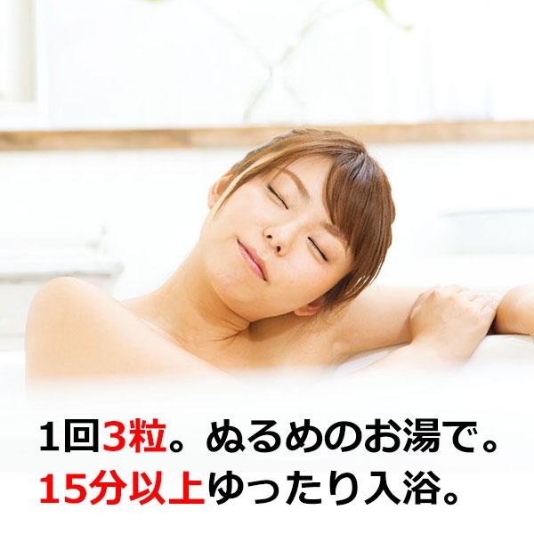 薬用入浴剤 ホットタブ 重炭酸湯 30錠入