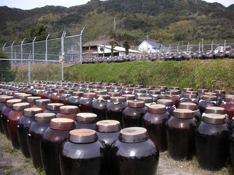 福山酢醸造 玄米黒酢