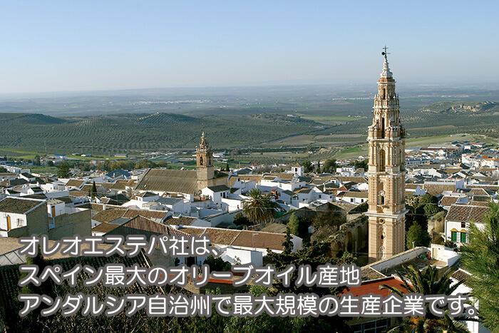 オレオエステパ社は、スペイン最大のオリーブオイル産地アンダルシア自治州で最大規模の生産企業です。
